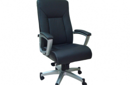 דנה כסא מנהלים מעור